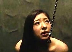Dazzling Oriental babe on a leash gets trained in bondage